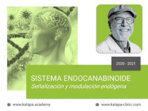 Portada curso online de Sistema Endocannabinoide