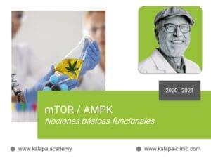 Portada curso online de mTOR y AMPK