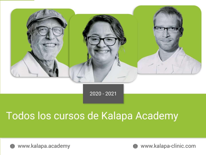 Portada todos los cursos Kalapa Academy