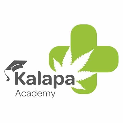 Logo de Kalapa Academy